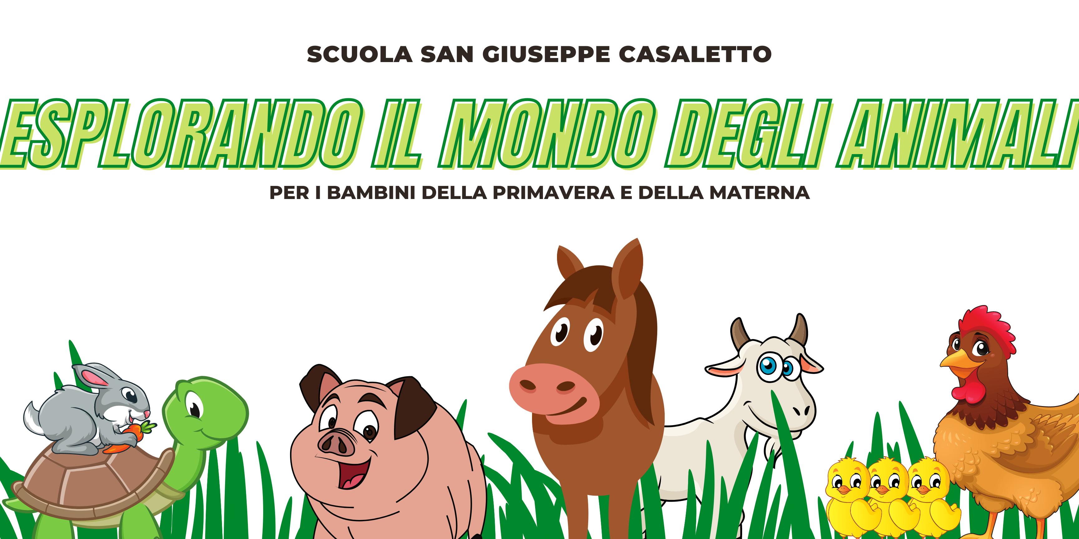 Banner Scuola San Giuseppe